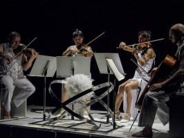 De Chair et d'Ame/Le Quatuor Appassionata